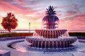 Pinapple Fountain